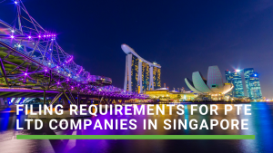What are the filing requirements for a private limited company in Singapore?